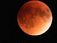 It's A Bird… It's A Plane…  It's Super Blood Moon!