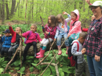 A pilot program between the KEC and the Wallingford Board of Education, Kinderwoods educates Wallingford kindergarteners on nature.